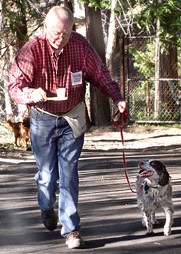 man walks dog on loose leash